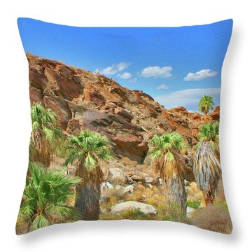 Indian Canyons View In Palm Springs Throw Pillow by Ben and Raisa Gertsberg