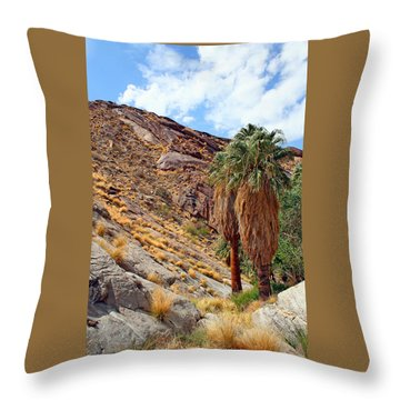 Indian Canyons View With Two Palms Throw Pillow by Ben and Raisa Gertsberg