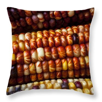 Indian Corn Harvest Time Throw Pillow by Garry Gay