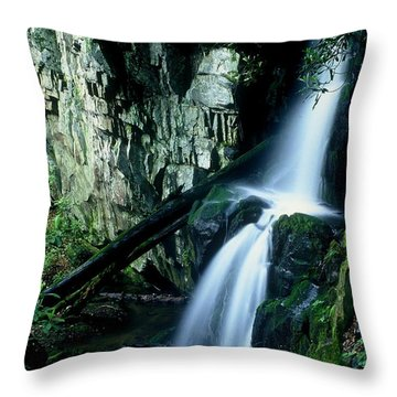 Indian Falls Throw Pillow by Rodney Lee Williams