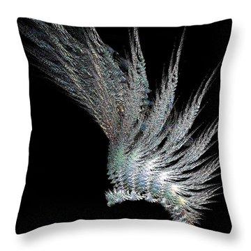 Indian Feather Head Dress Throw Pillow by Gail Matthews