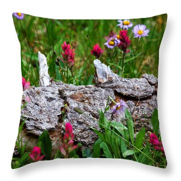 Throw Pillow featuring the photograph Indian Paintbrush by Ronda Kimbrow