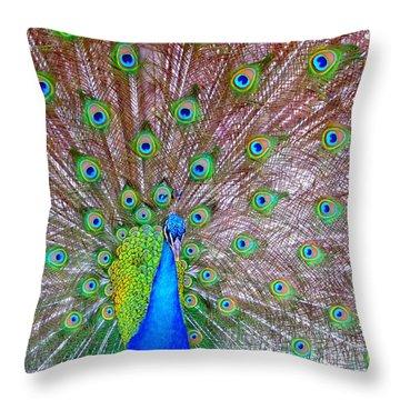 Indian Peacock Throw Pillow by Deena Stoddard