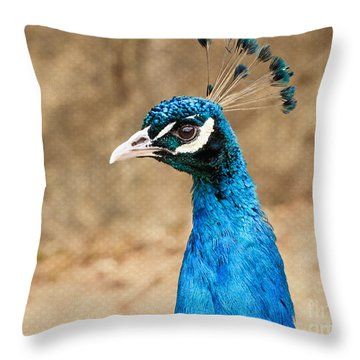 Indian Peafowl Profile Throw Pillow by MaryJane Armstrong
