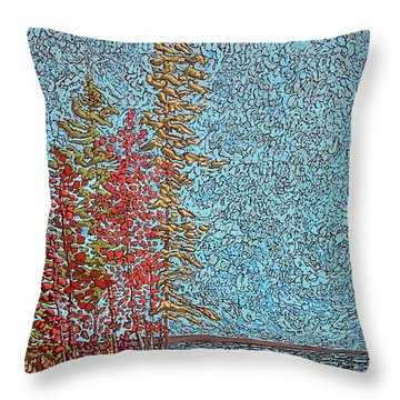 Indian Point - May 2014 Throw Pillow