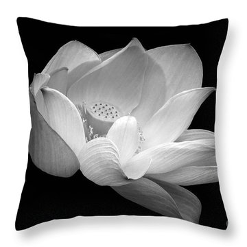 Indian Sacred Lotus In Black And White Throw Pillow