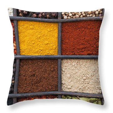 Indian Corn Throw Pillows