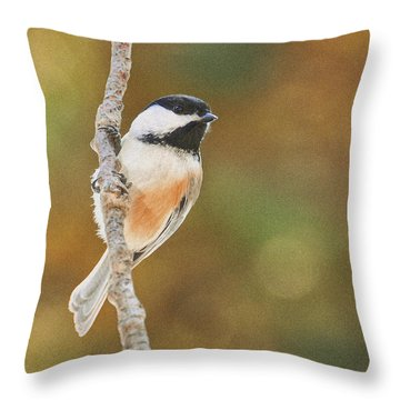 Indian Summer Chickadee Throw Pillow