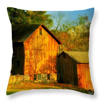 Indian Summer In October Throw Pillow