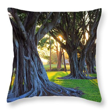 Indian Sunset Throw Pillow
