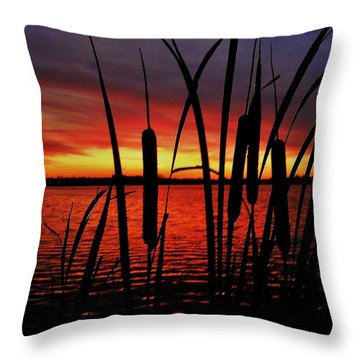 Indiana Sunset Throw Pillow by Benjamin Yeager