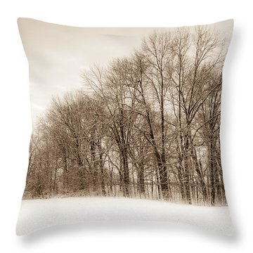 Indiana Winter At Freedom Park - Horizontal Throw Pillow