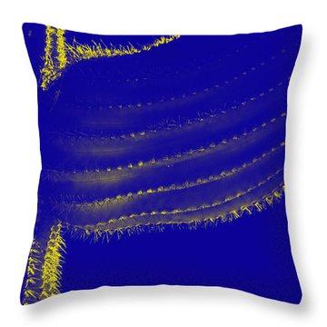 Throw Pillow featuring the photograph Indigo Saguaro I by Carolina Liechtenstein