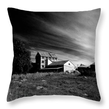 Throw Pillow featuring the photograph Industry Meets Rural by Nareeta Martin
