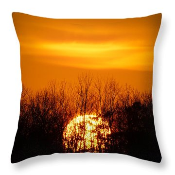 Inferno In The Trees Throw Pillow