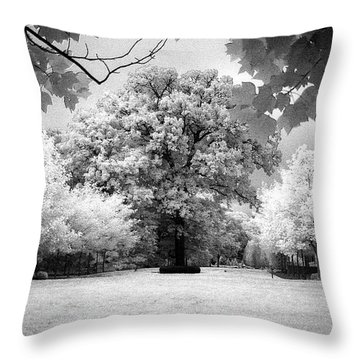 Infrared Majesty Throw Pillow
