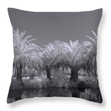Infrared On A Sunny Afternoon Throw Pillow