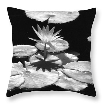 Infrared - Water Lily 02 Throw Pillow by Pamela Critchlow