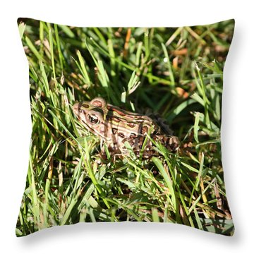 Infrognito Throw Pillow