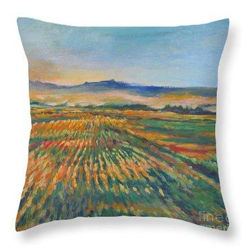 Inland Fields Throw Pillow by Vanessa Hadady BFA MA