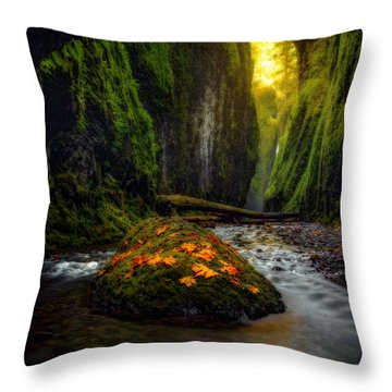 Throw Pillow featuring the photograph Inner Sanctum  by Dustin  LeFevre