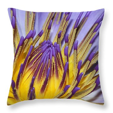 Throw Pillow featuring the photograph Inner Sanctum by Judy Whitton