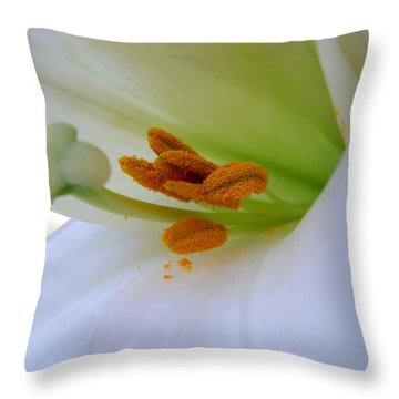 Inner Secrets Throw Pillow