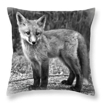 Innocence II Paint Bw Throw Pillow by Steve Harrington
