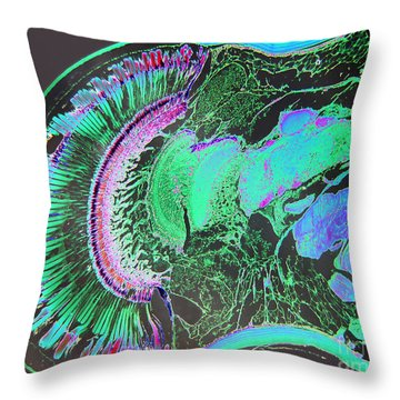Insect Eye Throw Pillow
