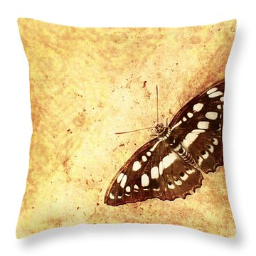 Insect Study Number 66 Throw Pillow by Floyd Menezes