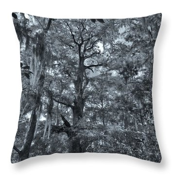 Inside A Cypress Dome Throw Pillow