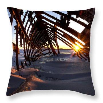 Inside A Skeleton Throw Pillow by Jakub Sisak