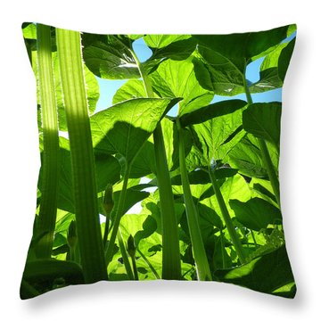 Inside Another World Throw Pillow