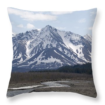 Inside Denali National Park 4 Throw Pillow