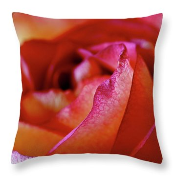 Inside Edge Throw Pillow by Rona Black
