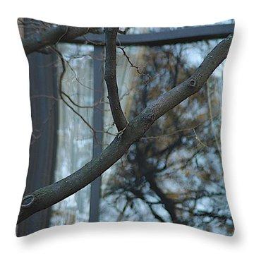 Inside Throw Pillow by Joseph Yarbrough