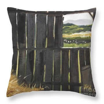Barn -inside Looking Out - Summer Throw Pillow
