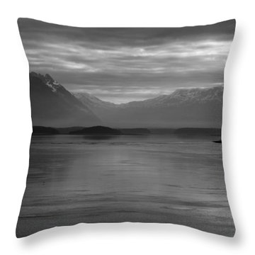 Inside Passage Black And White Throw Pillow