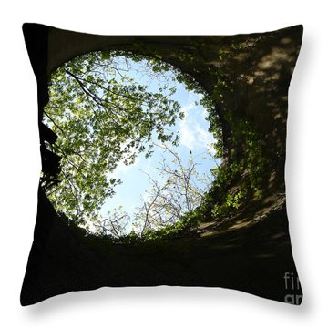 Throw Pillow featuring the photograph Inside The Silo by Jane Ford