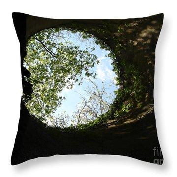 Inside The Silo Throw Pillow