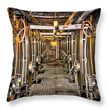 Inside Winery Throw Pillow by Elena Elisseeva