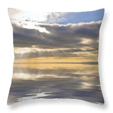 Inspiration Reflection Throw Pillow by Matthew Gibson