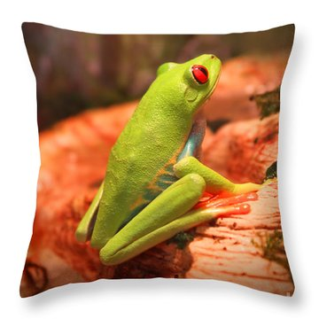 Inspirations For Tomorrow Throw Pillow by Cathy  Beharriell