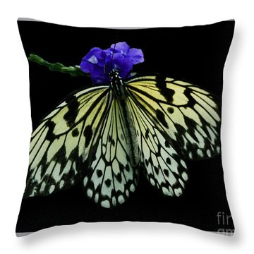 Inspired By Butterflies  Throw Pillow by Inspired Nature Photography Fine Art Photography