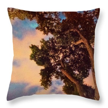 Inspired By Maxfield Parrish Throw Pillow