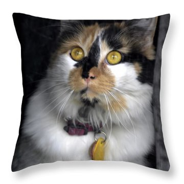 Intense Cleo Throw Pillow