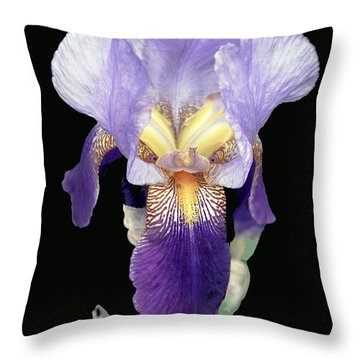 Intense Iris Throw Pillow