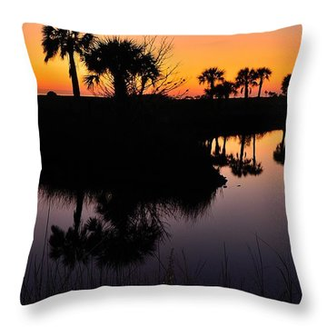 Throw Pillow featuring the photograph Intense Reflections by Richard Zentner