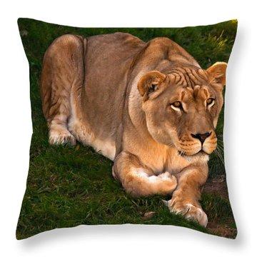 Intensity 2 Throw Pillow by Steve Harrington