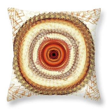 Internal Target Throw Pillow by Anastasiya Malakhova